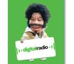 Digital Radio - DAB - SUTTON COURTNEAY - OXFORDSHIRE